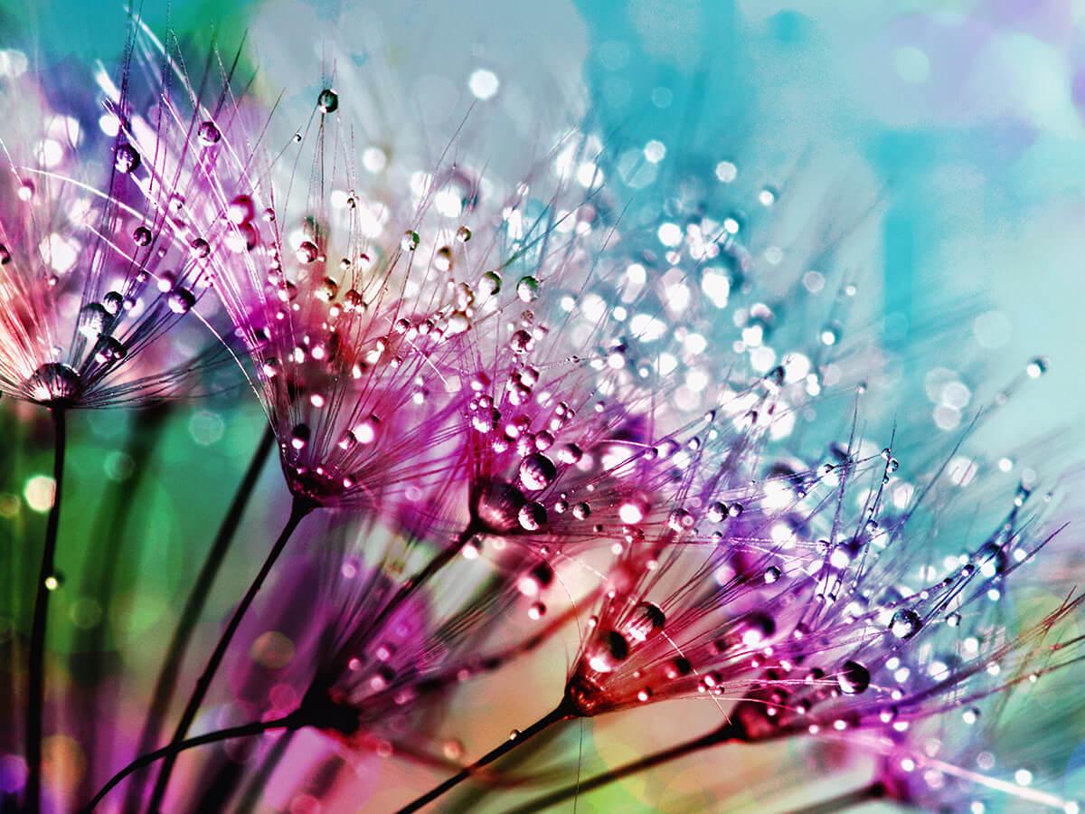 Deszcz kolory tęczy